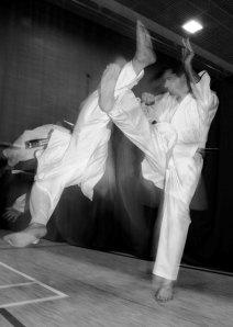 karate1w