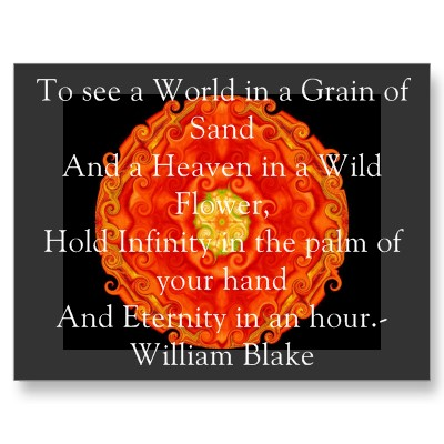 william_blake_world_in_a_grain_of_sand_quote_postcard-p239933691501455150z8iat_400