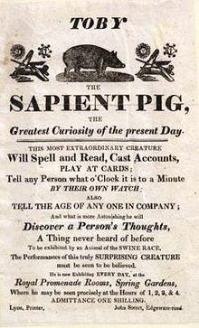 220px-Toby_the_sapient_pig