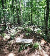 green burial 2