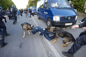 police-dog-attack-denmark